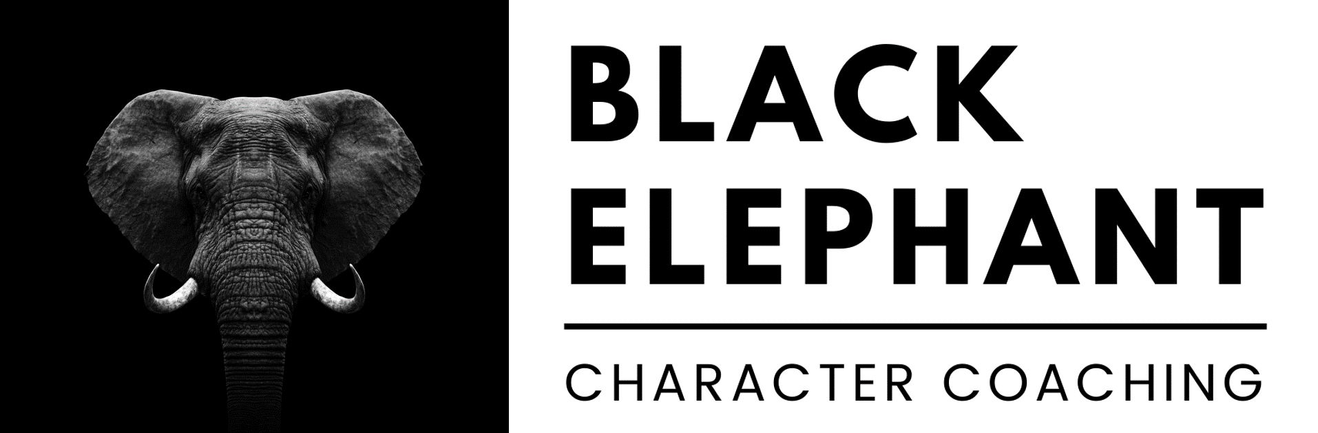 Black Elephant Coaching